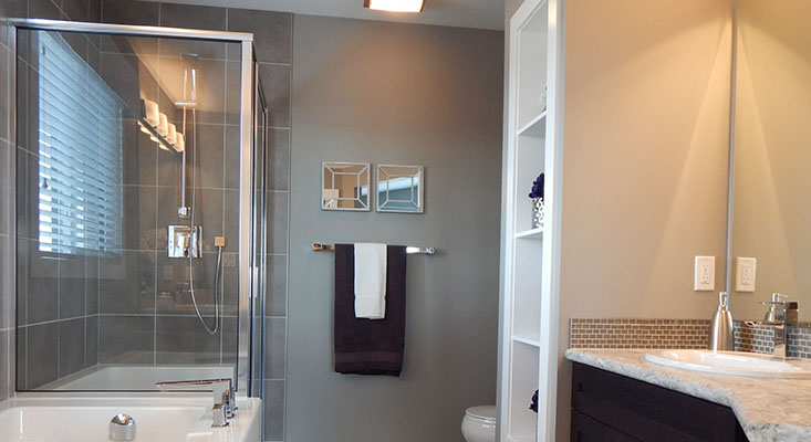 Shower Door Enclosures 2