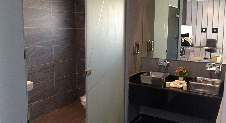 Shower Door Enclosures 3